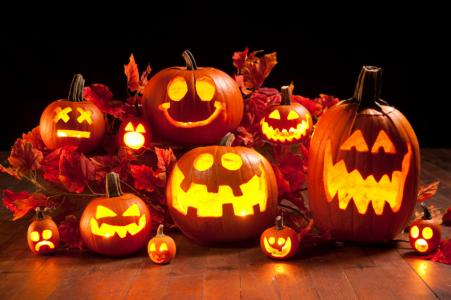 Halloween-Kürbis-Ernte